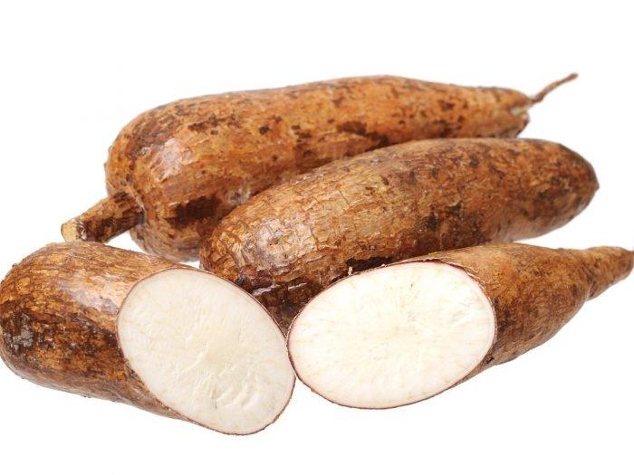 Manioc / Cassava